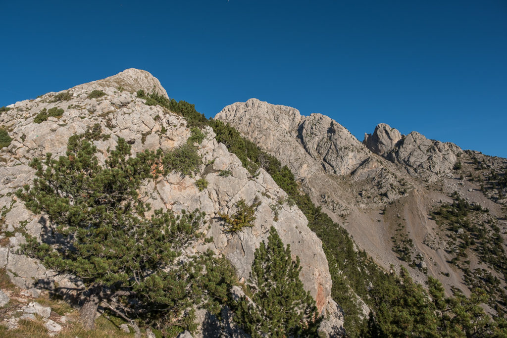 The summit of Pedraforca covered with bushes and limestones