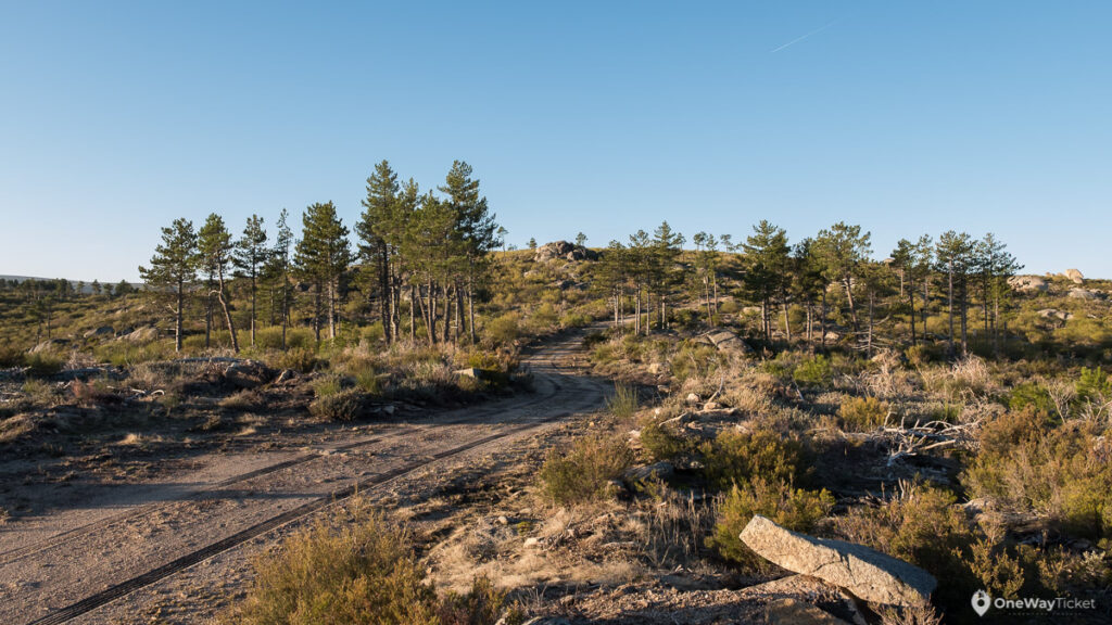 Offrad route between trees to the Curral da Nave the stony peak near Manteigas in Serra Da Estrela