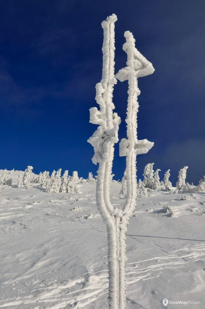 Signpost covered with frozen snow in Krkonose mountains seen during expedition with the pulk